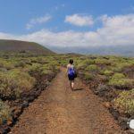 Malpaís de Güímar, Réserve Naturelle et Paysage volcanique