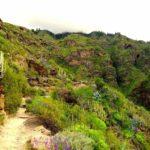 Le Ravin de l'Enfer, Gorges volcaniques à Adeje
