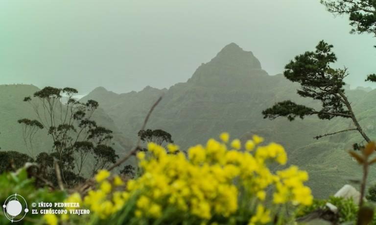 Montagnes de la Reserve Naturelle d'Anaga ©Iñigo Pedrueza.